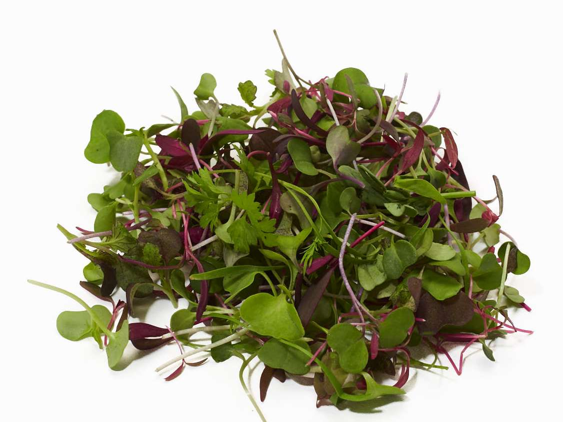 Intensity Microgreen Mix