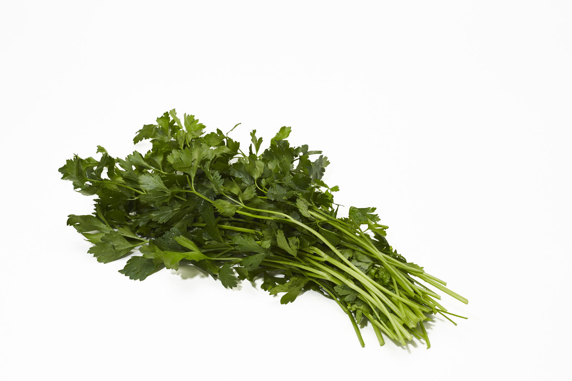 Fresh Italian Flat Leaf Parsley