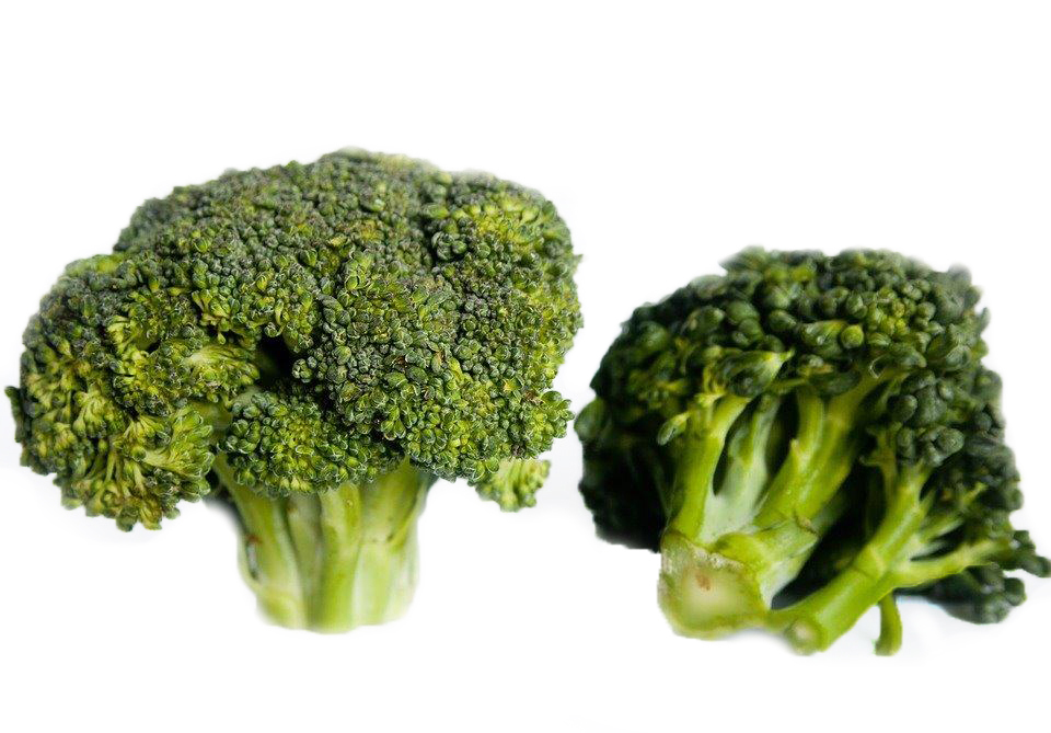 Broccoli florettes