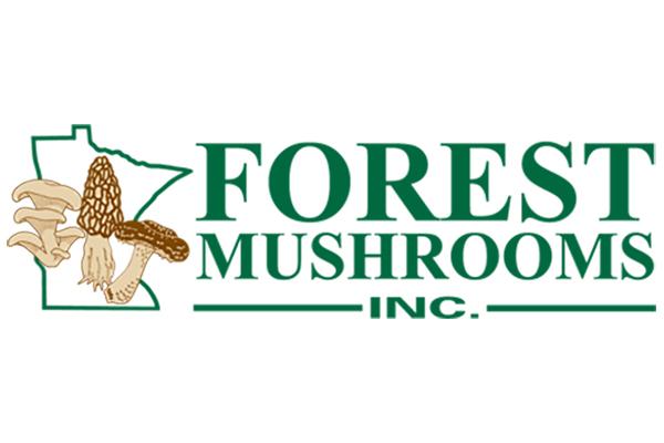 Forest Mushroom Logo